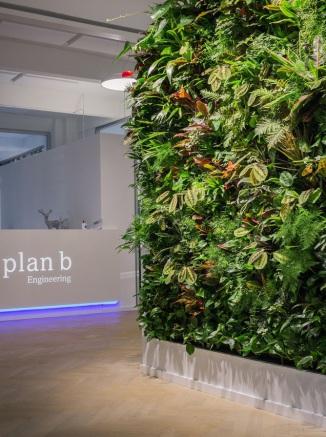 Bürobegrünung, vertikaler Garten, Grüne Wand